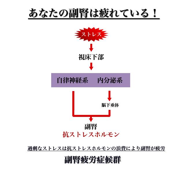 jiritsu2.hp.png